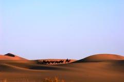 Desert and Camel caravan Stock Photos