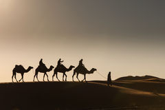 Desert, Camel Ride, Enjoying and happy People Royalty Free Stock Photos