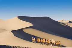 The desert Royalty Free Stock Images