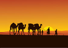 Desert camels caravan vector illustration