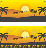 Desert camels. Caravan in sunset time Royalty Free Stock Photography