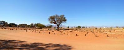 Desert Camp in Namib. Near Dune 45, Africa Royalty Free Stock Photography
