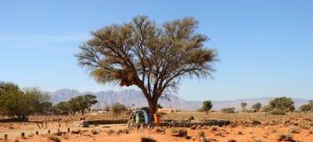 Desert Camp in Namib. Near Dune 45, Africa Royalty Free Stock Photos