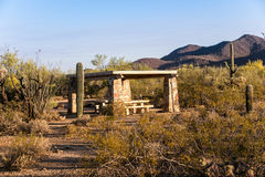 Desert Campsite. A shaded campsite with picnic tables in Arizona's Sonoran desert with Saguaro and Ocotillo cactus stock photo