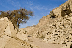 Desert canyon. Scenic view of rocky desert canyon stock photo