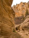 Desert canyon with eroded cliffs Royalty Free Stock Photos