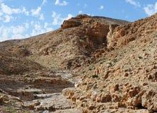 Desert canyon. Kidod Ceek near Arad in Negev, Israel Royalty Free Stock Photography