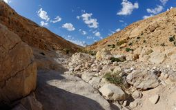 Desert canyon Royalty Free Stock Photos