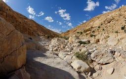 Desert canyon. Kidod Ceek near Arad in Negev, Israel Royalty Free Stock Photos
