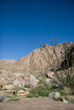 Desert Canyon and Mountains Stock Images