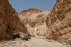 Desert canyon. Nachal Ogg near the Dead Sea in Israel Royalty Free Stock Image