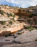 Desert canyon panorama. True wide and tall panorama of a desert canyon, with a trickle of water in the streambed, on Natural Bridges National Monument in Royalty Free Stock Images