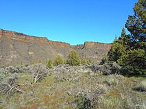 Desert Canyon Scene. View in Crooked River Canyon at Crooked River Ranch - near Terrebonne, OR royalty free stock photography