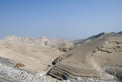 Desert canyon of Wadi Kelt in Israel Royalty Free Stock Photography