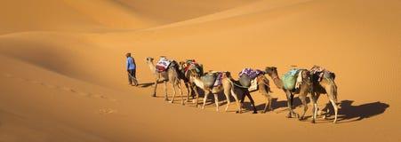 Desert caravan Stock Photos