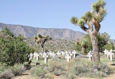 Desert Cemetery Stock Image