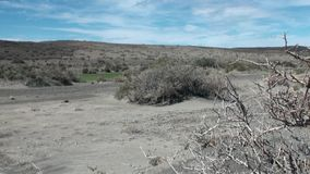Desert on coast line of ocean in Argentina. stock video