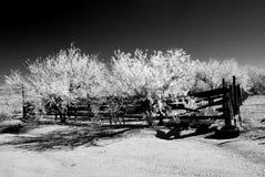 Desert Corral Infrared stock images