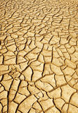 Desert cracked ground Royalty Free Stock Photo