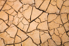 Desert with cracked ground. background, texture Stock Photography