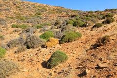 Desert at Crete Royalty Free Stock Images