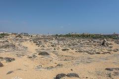 Desert on Cyprus stock photography