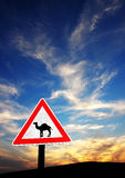 Desert Danger. Road sign in the negev, Israel, warning car drivers of crossing camels Stock Photography