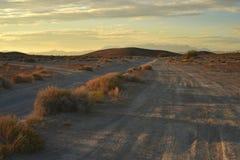 Desert dawn on dirt roads Stock Image