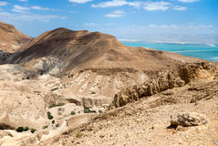 Desert and dead sea. In Israel Royalty Free Stock Photos