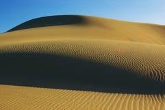Desert detail Royalty Free Stock Images