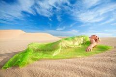 Desert dreams Royalty Free Stock Images