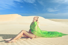 Desert dreams Royalty Free Stock Photography