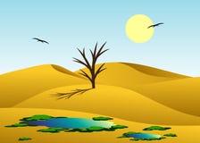 Desert. Royalty Free Stock Photography