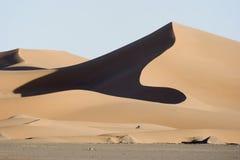Desert dune Royalty Free Stock Images
