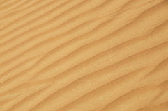 Desert dune detail Royalty Free Stock Photography