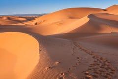 Desert dune at Erg Chebbi near Merzouga in Morocco. Royalty Free Stock Images