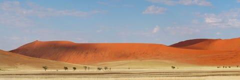 Desert dune panorama, Namibia. Panorama landscape of red desert sand dunes, Sossusvlei, Namibia, southern Africa Stock Photo
