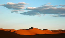 Desert dunes. Sand dunes in morning Sahara desert Stock Photography