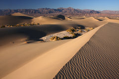 Desert dunes. In Death Valley national park, California, USA Royalty Free Stock Photo