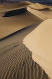 Desert dunes Royalty Free Stock Photo