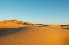 Desert Dunes. Sahara desert calm sand dunes with blue sky Royalty Free Stock Photography