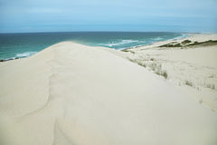 Desert dunes in De hoop nature reserve Royalty Free Stock Images