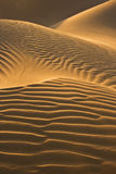 Desert dunes in evening sun. Dunes glowing in the last sunrays of the evening sun in the Moroccan Sahara Royalty Free Stock Image