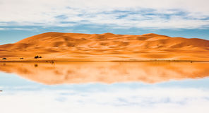 Desert dunes and lake Royalty Free Stock Photography
