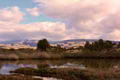 Desert dunes of Maspalomas, Gran Canaria Royalty Free Stock Image