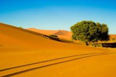 Desert and dunes in Namib Desert, Namibia. Orange dunes in Sossusvlei, Namibia royalty free stock images