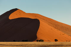 Desert dunes rise high against blue sky with curving shadow Royalty Free Stock Photography