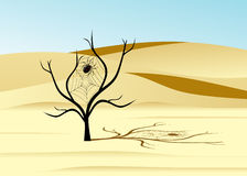 Desert. Royalty Free Stock Photos
