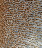 Desert, Dunes, Sand Dunes, Dune Sea Royalty Free Stock Image