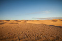 Desert and dunes Royalty Free Stock Image